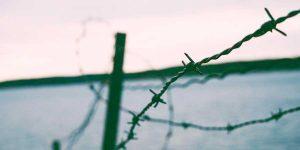 Protege tu contenido en WordPress mediante contraseña