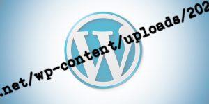 Obtener la URL de la imagen destacada de un post en WordPress